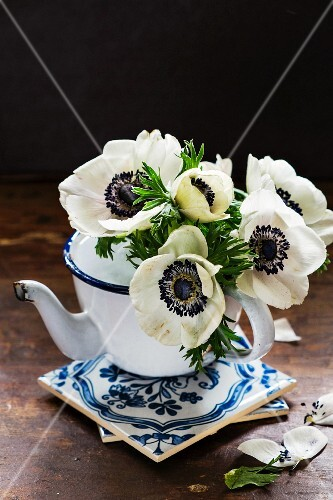 White anemones in an old-fashioned metal jug on a stack of tiles