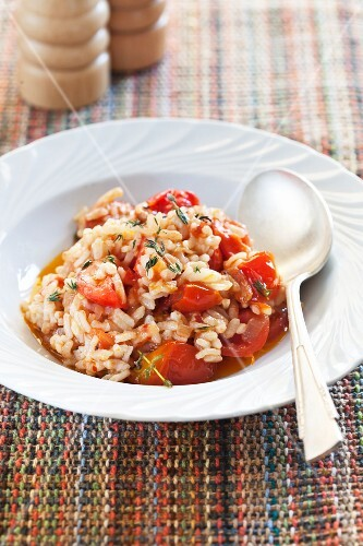Tomato risotto on a white plate