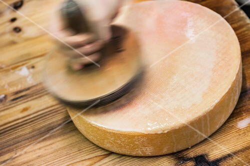 A wheel of cheese being brushed to make a rind