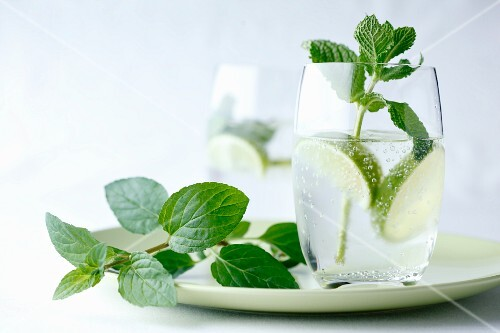 Fresh mint in a glass of water with limes on a green plate