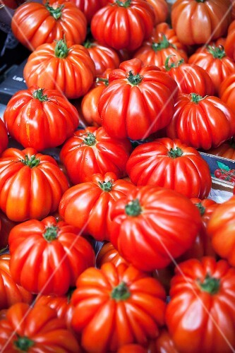 Costoluto Genovese tomatoes on a market stall