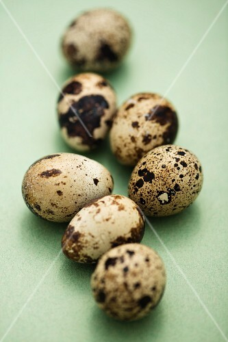 Several quails' eggs