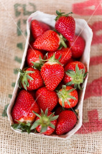 Quart of Fresh Maine Strawberries