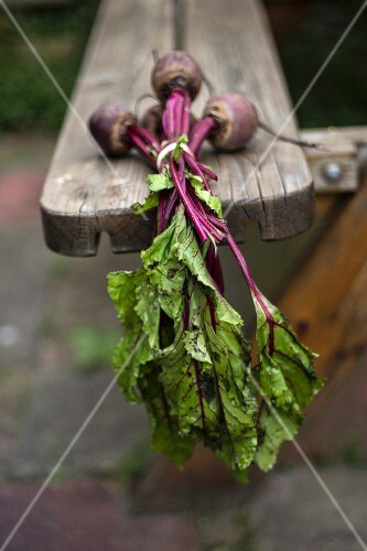Beetroot on a wooden bench in a garden