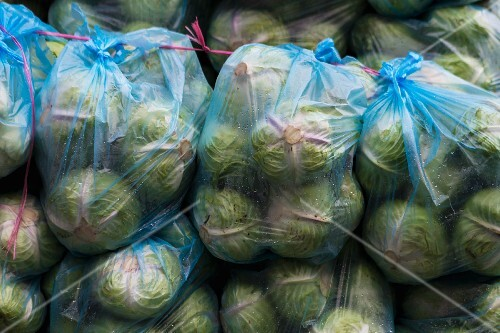 Bagged white cabbages for sale (Vientiane, Laos)
