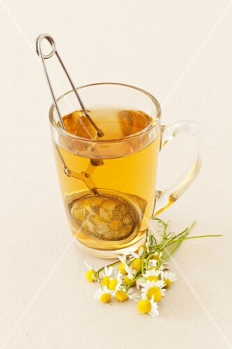 A glass of camomile tea and fresh camomile flowers