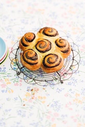 Poppy seed buns on a wire rack