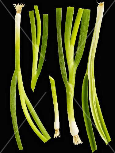 Spring onions on a black surface