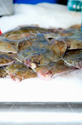 Fresh plaice on ice at a fish market