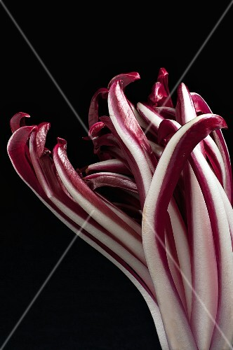 Radicchio di Treviso on a black surface