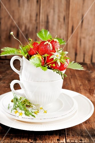 Strawberries with flowers and leaves in a cup