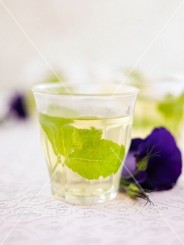 A glass of peppermint tea with mint leaves next to a violet