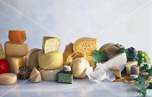 Assorted Cheese Still Life