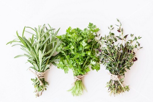 Three bunches of fresh herbs: rosemary, coriander and thyme