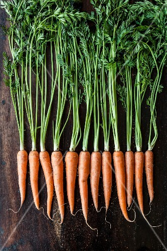 A row of carrots on a wooden surface