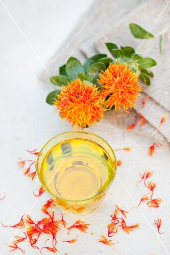 A glass of thistle oil made from safflower with flowers and petals