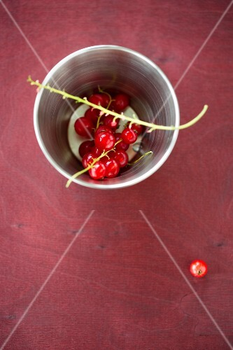 Redcurrants in a metal cup