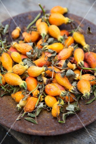 Hairy, yellow and orange rosehips on a plate