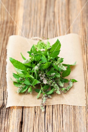 A bunch of fresh, flowering, organic mint