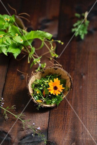 Wild herb salad in a coconut shell in front of a bunch of herbs