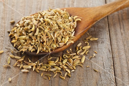 Dried fennel seeds on a wooden spoon