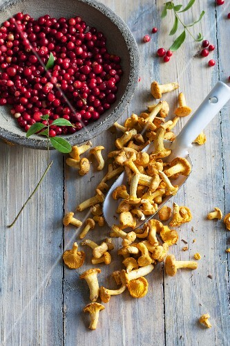 Chanterelle mushrooms and cranberries