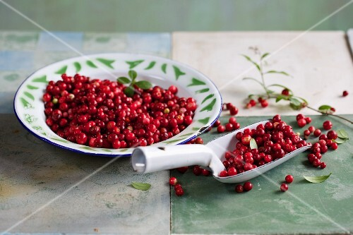Cranberries on a plate and on a scoop