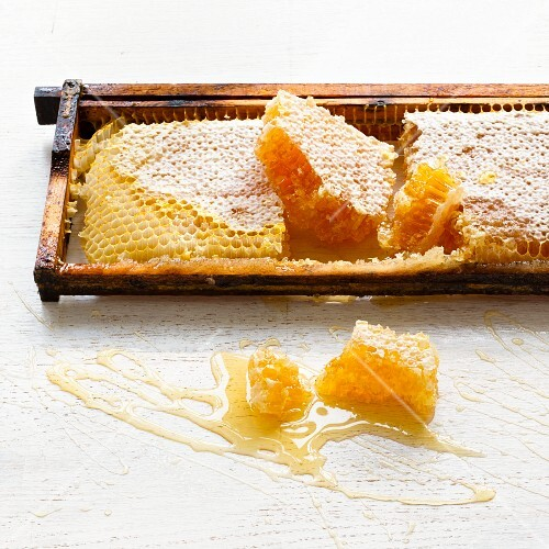 Honeycomb in a wooden frame
