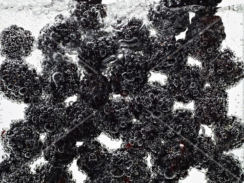 Blackberries under water with bubbles