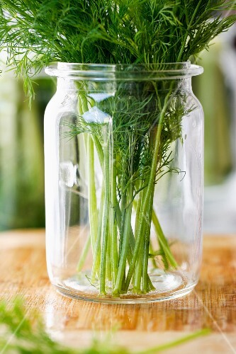 Fresh dill in a jar