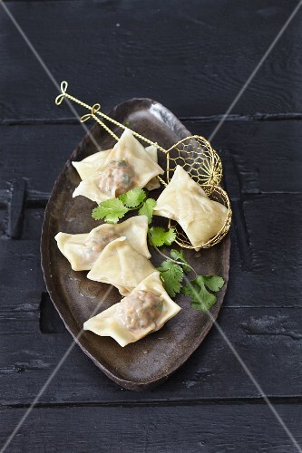 Meat-filled wontons
