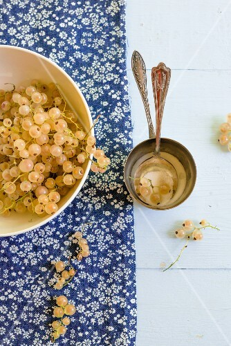 Whitecurrants and sugar with vintage spoons