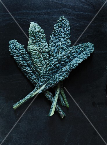 Cavelo Nero cabbage leaves on a dark background