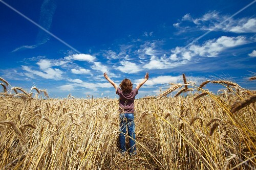 A happy boy in a wheat field, France