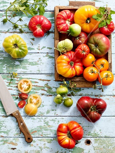 Heirloom tomatoes on a wooden table