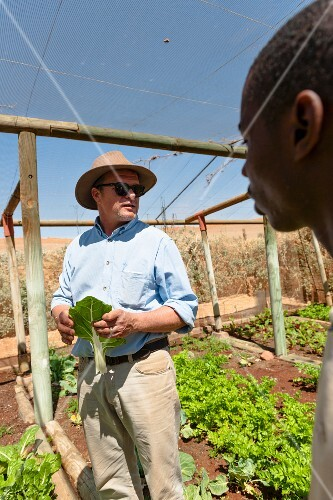 Wolwedans, NamibRand Privatreservat, Namibia, Africa – lettuce growing in the greenhouse, Mr. Brückner and a worker