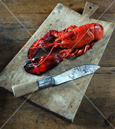 A lobster on a chopping board