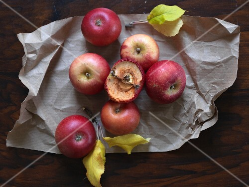 Red apples on a piece of paper, one dried out