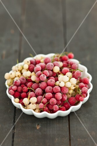 Frozen white and redcurrants
