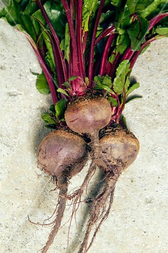 Three beetroots with leaves