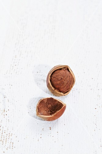 A cracked hazelnut