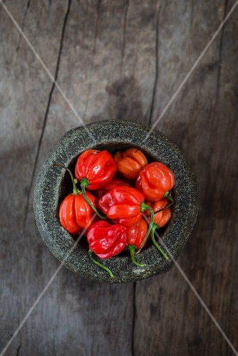 Fresh Scotch Bonnet chilli peppers in a mortar