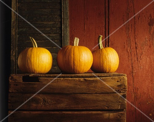 Three pumpkins on a wooden crate