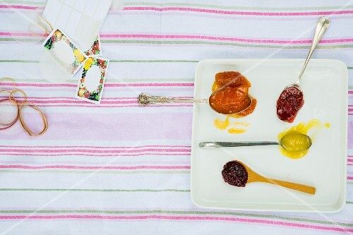 Spoonfuls of home made jam on white plate with labels and utensils on a picnic blanket