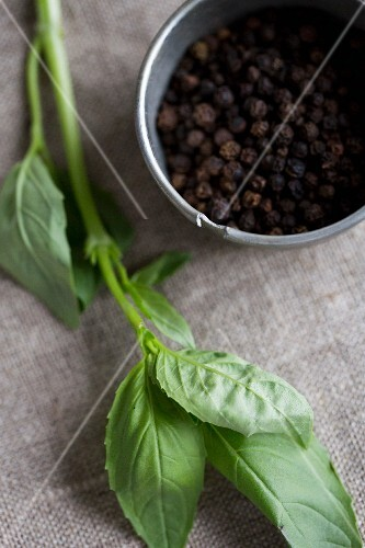 Peppercorns and fresh basil