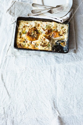 Vegetarian pepper lasagne with ricotta and pine nuts