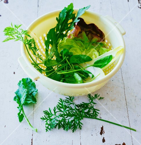 Ingredients for green smoothies: lettuce and herbs