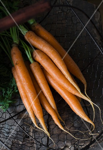 A bundle of fresh carrots in a wire basket