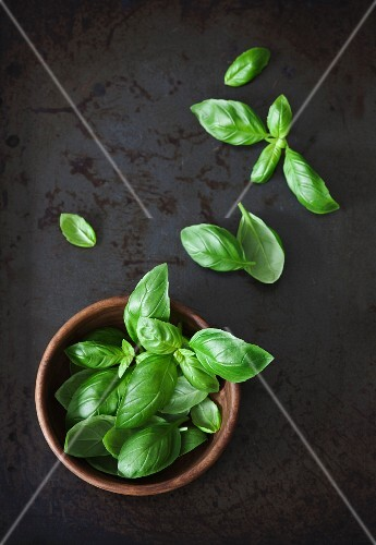 Fresh basil leaves in a wooden bowl