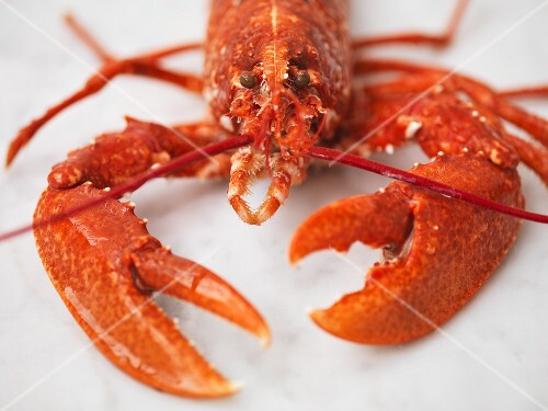 Cooked lobster (detail)